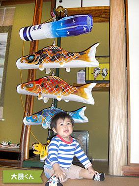 タイトル:ぼくの鯉のぼり 投稿者:稲岡様 【コメント】 家の中でも元気に泳いでいます。